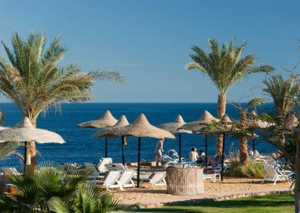Pacote, Cairo, Sharm El Sheikh com Monte Sinai e Petra