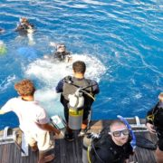 Diving Sharm El Sheikh  noEgito