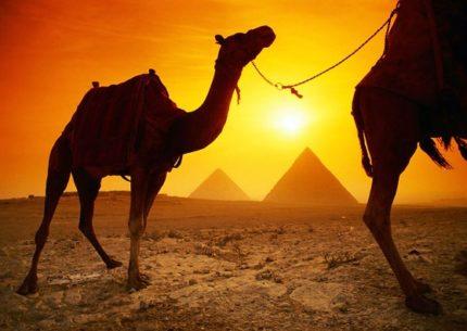 Cairo e Alexandria por 5 dias